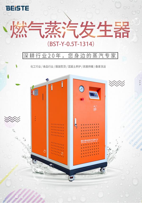 300kg燃气蒸汽发生器1.png