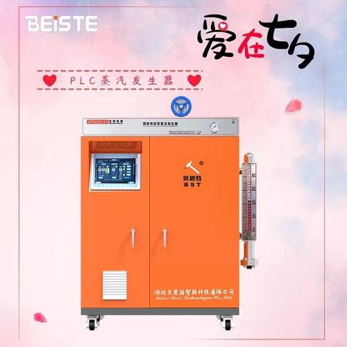 PLC蒸汽发生器.jpg