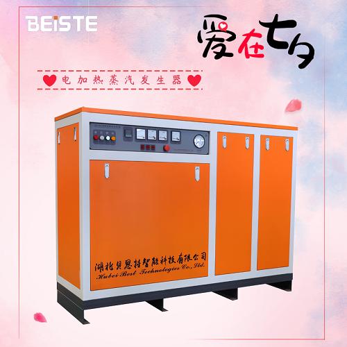 电加热蒸汽发生器.png